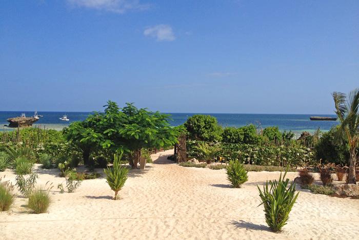 Med-beachview.jpg