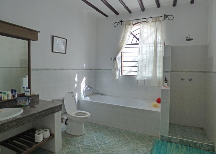 Lazy-bathroom.jpg