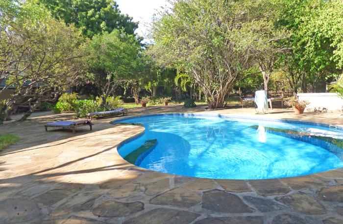Lazy-pool.jpg