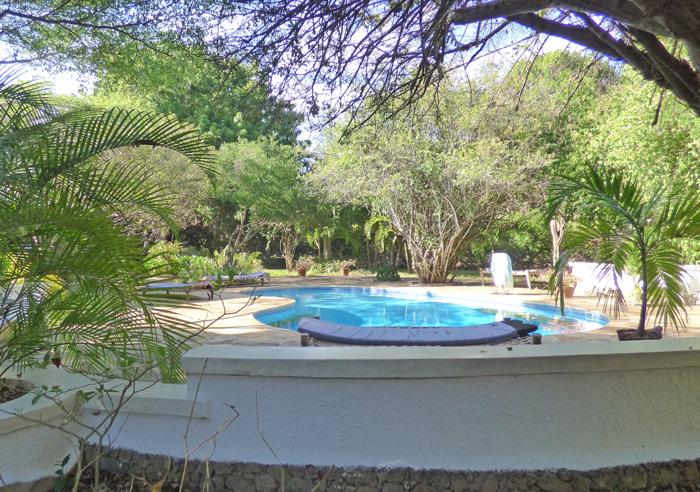 Lazy-pool-garden.jpg