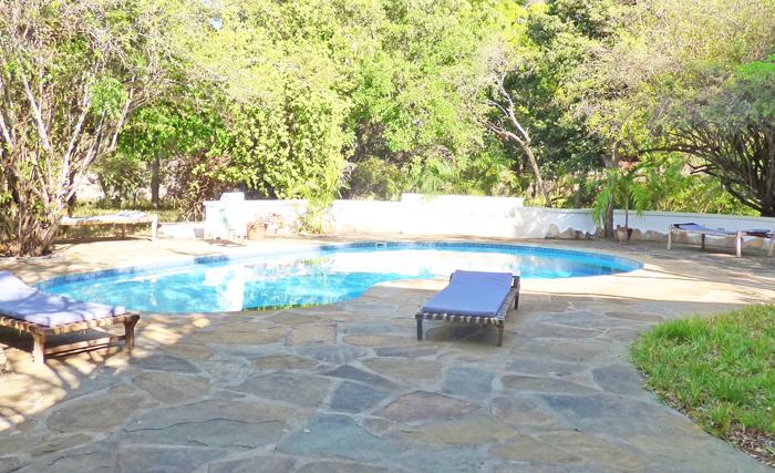Lazy-pool2.jpg