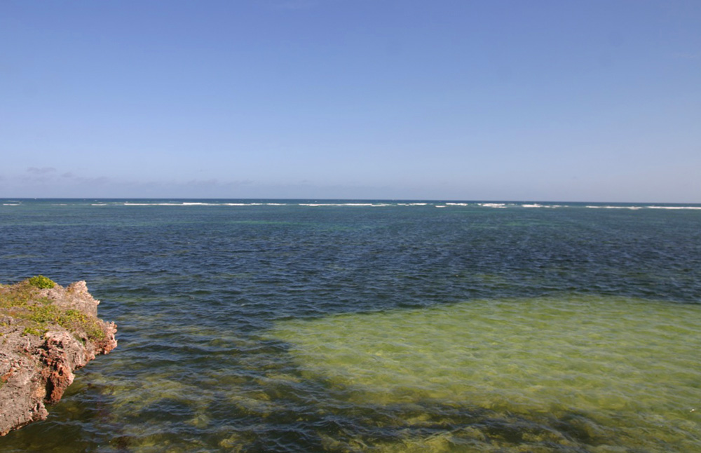 5 ACRE FREEHOLD BEACH PLOT FOR SALE - North Watamu