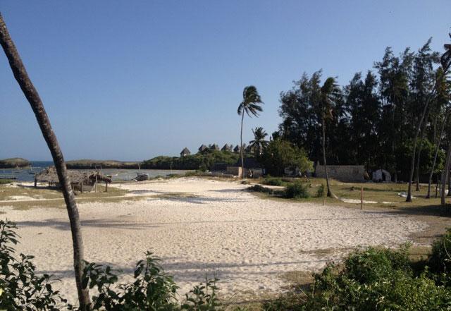 Nicky-beach.jpg