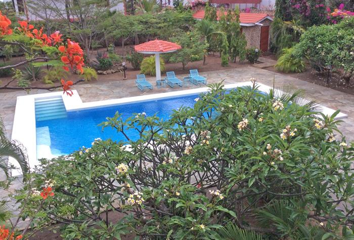 Main-garden-pool.jpg