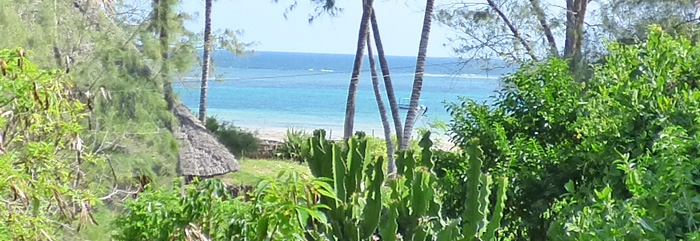 WONDERFULLY POSITIONED BEACHFRONT PLOT OVERLOOKING TURTLE BAY FOR SALE - (REF: BGS01)