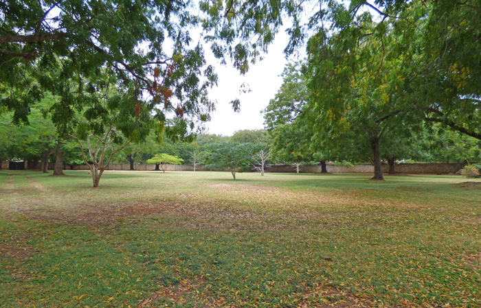 NEW BEAUTIFUL 1 & 1.5 ACRE ADJOINING PLOTS IN KILIFI BOFA, 2ND ROW  - (REF:  KSB03)