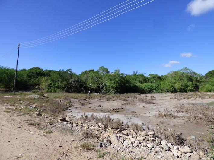FOUR ACRES OF 2ND ROW NEXT TO BEACH ACCESS - 2ND ROW - TURTLE BAY BEACH - SOUTH WATAMU