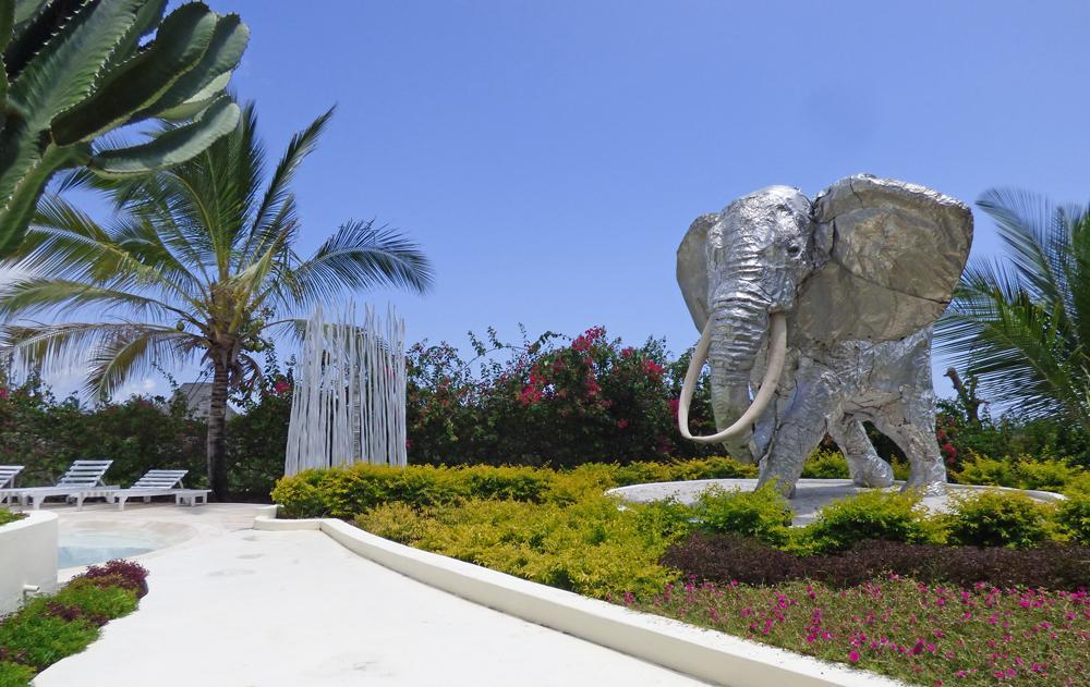NVFT01-elephant.jpg