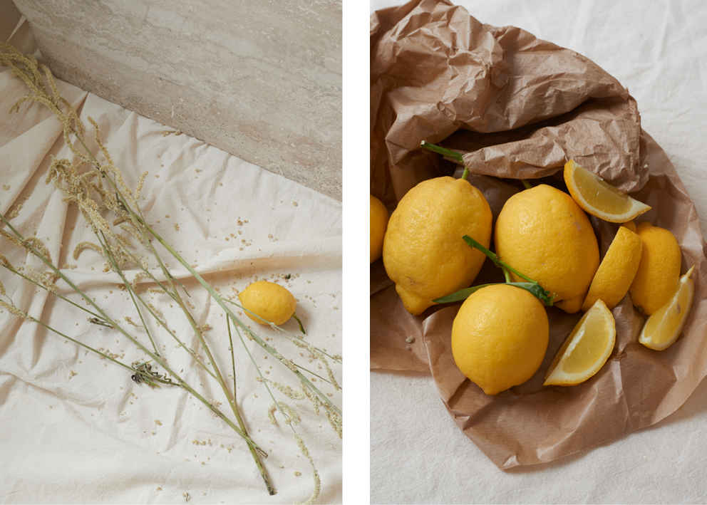 The new limited edition print collection - The Schelgel Collection  Foto: Katrine Rohrberg