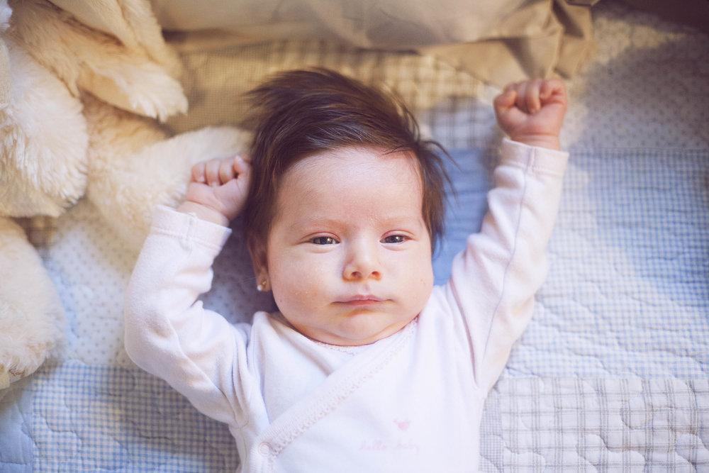 Babies - Bebés