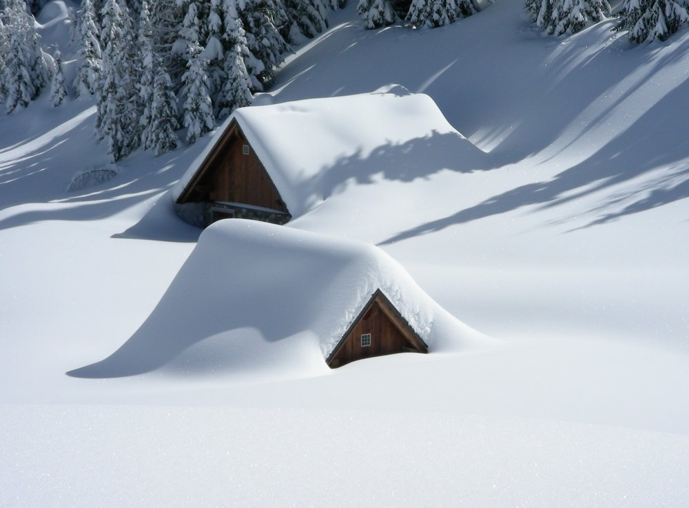 alm-friuli-snow-snowfall-45204.jpeg