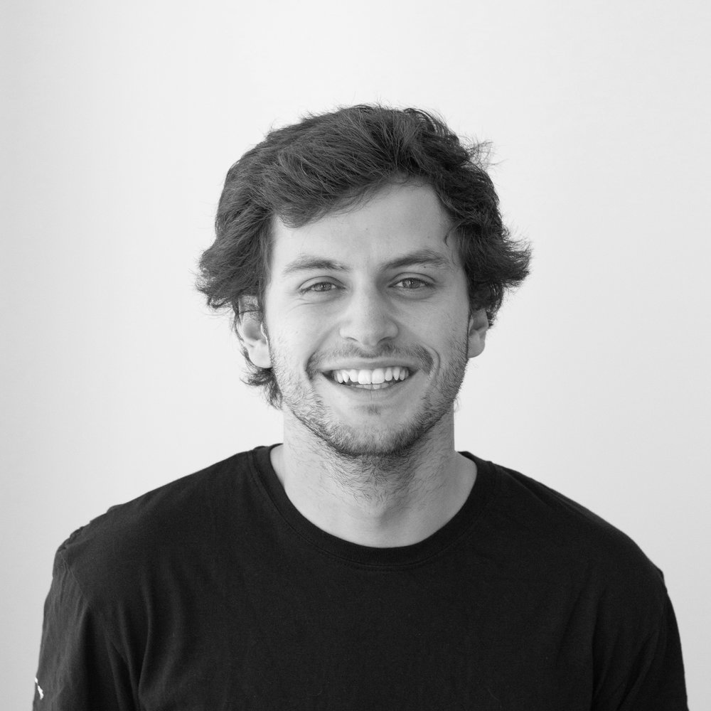 Francisco Abreu Business Analyst