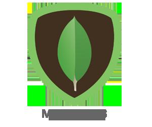 mongodb_slide.png
