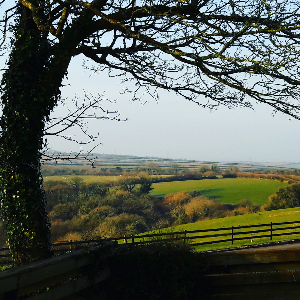 The view from the cottages in Cornwall Penrose Burden luxury holiday cottages.jpg