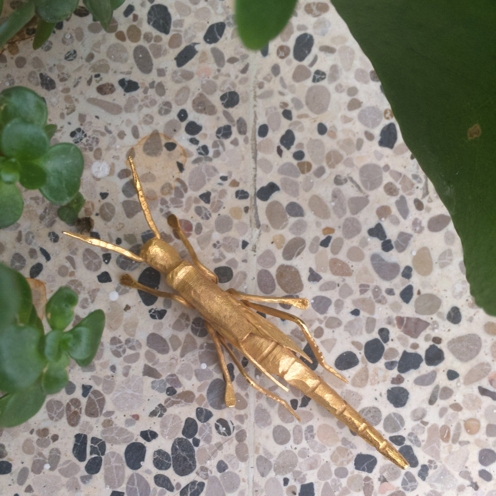 Vivarium_ST2017_grasshopper.jpg