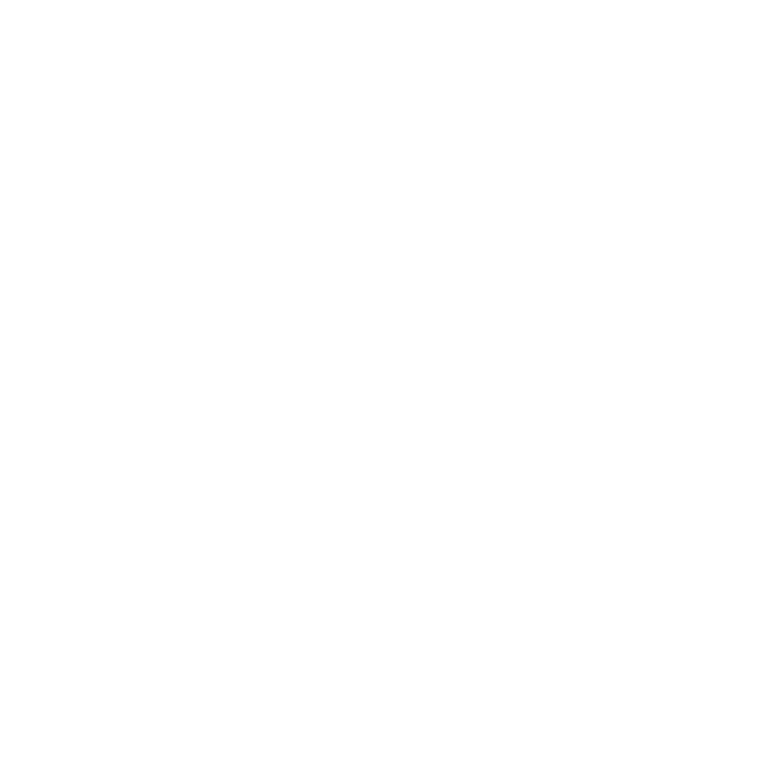 Valley Rally