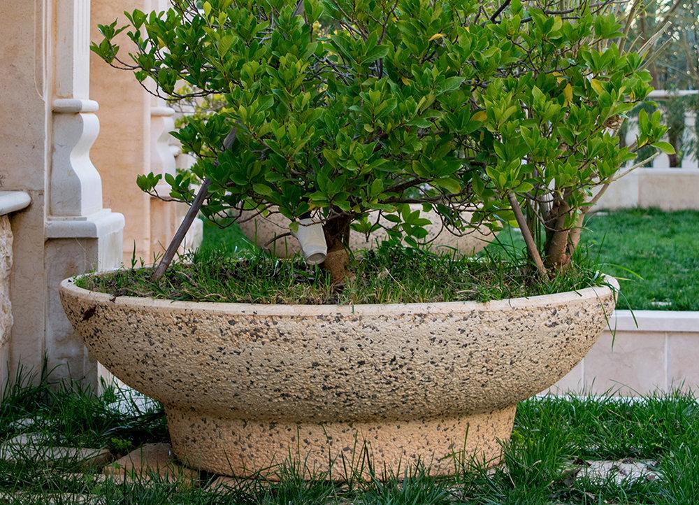 Bashroun Vase