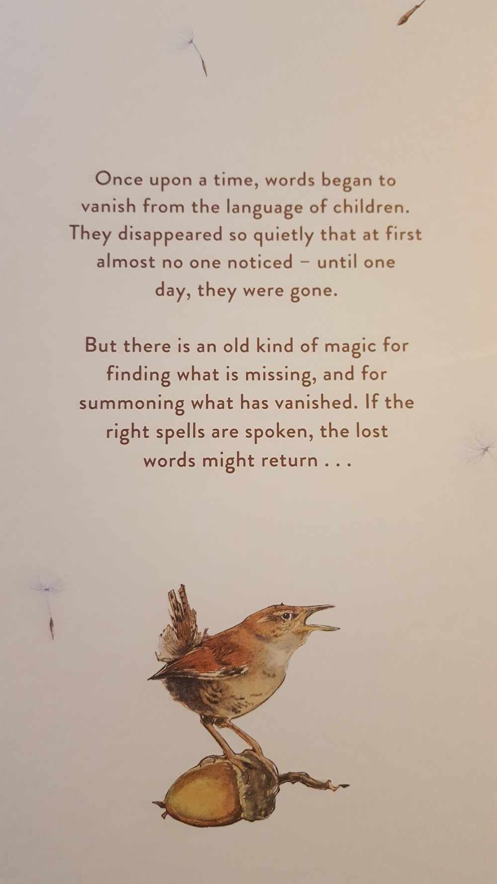 Back cover of 'The Lost Words'