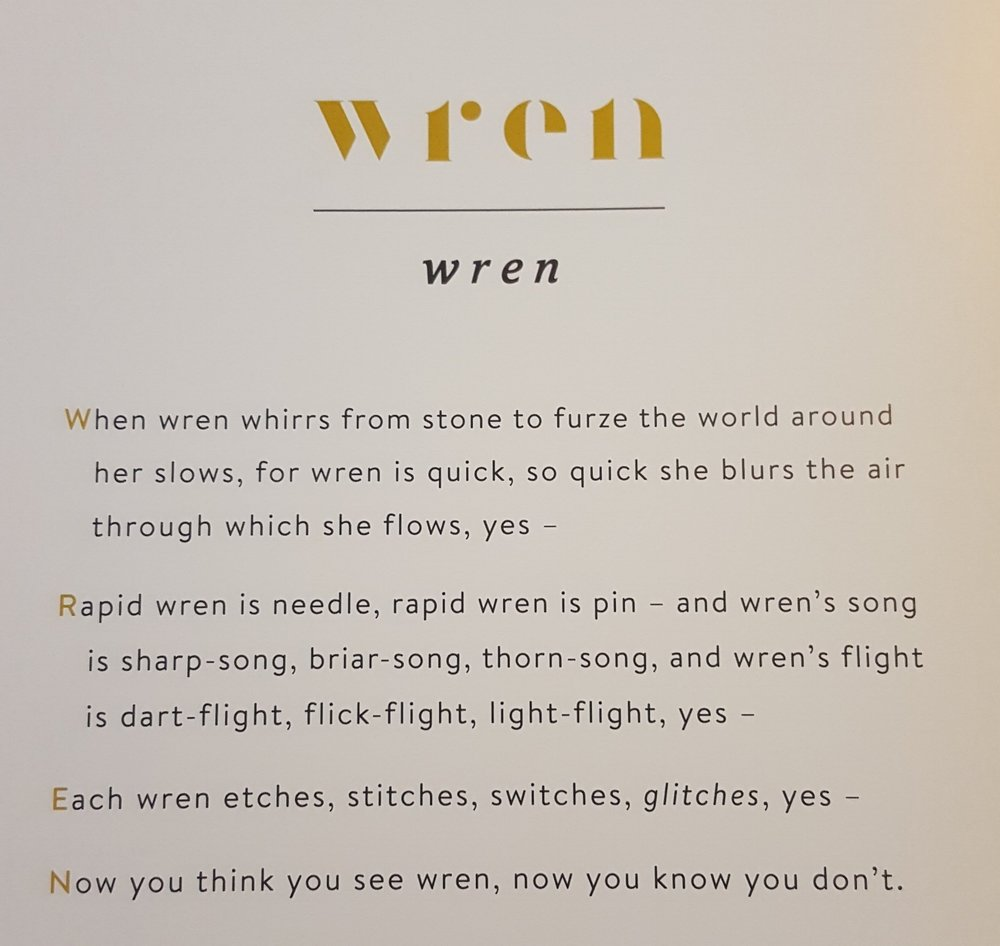 The wren's acrostic with its rich onomatopoeia and perfect pacing