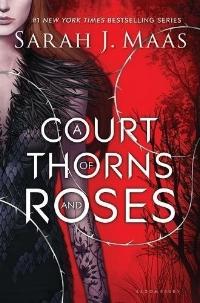 court of thorns.jpg