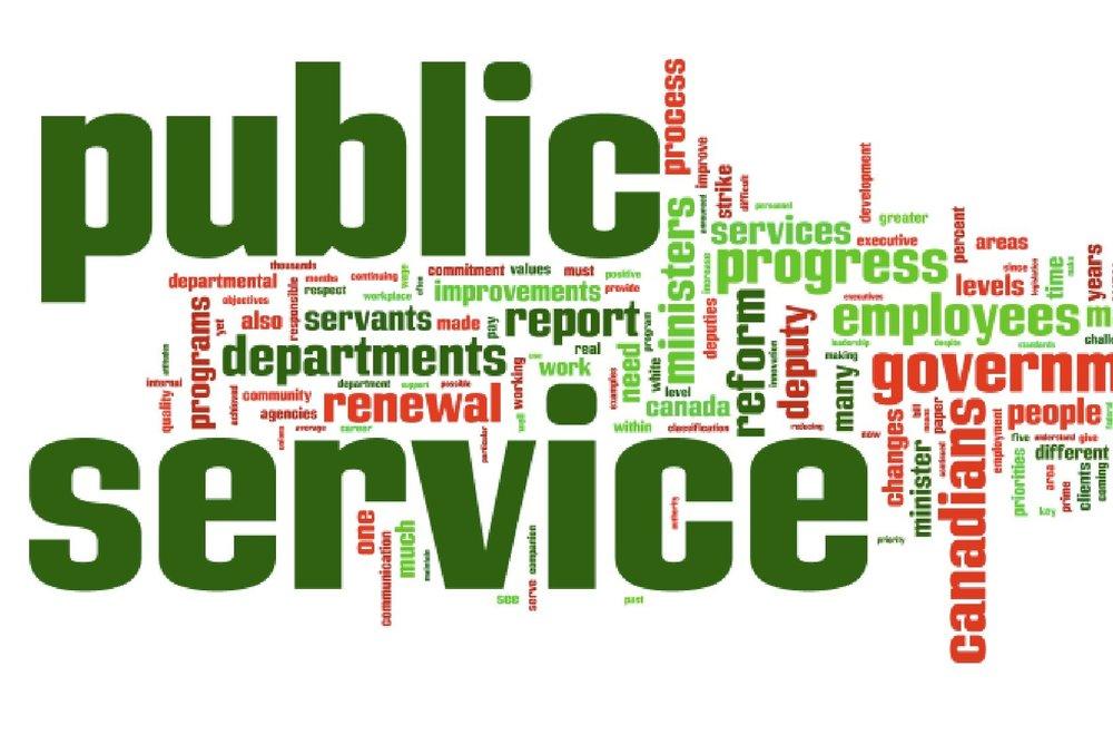 What is Public Service?