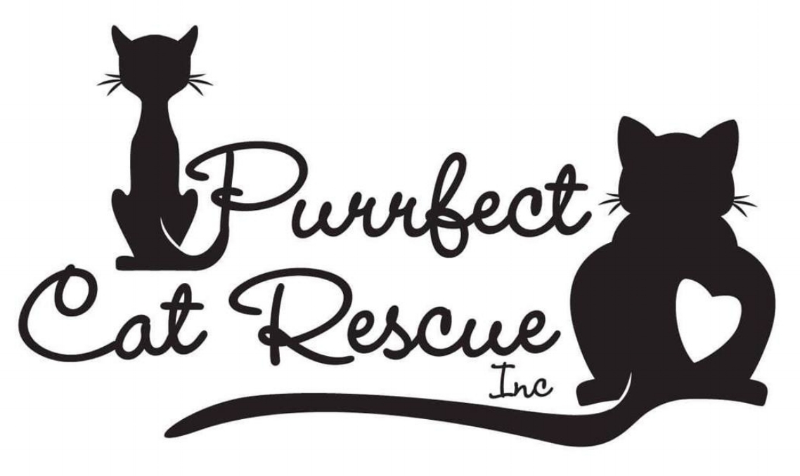 Purrfect Cat Rescue