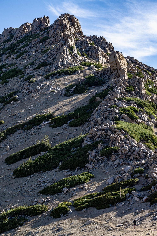Tahoe Section (123 of 123).jpg