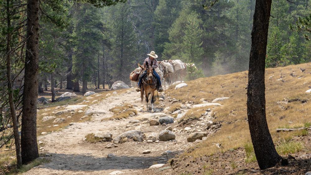 July 23-30 -- Backpacking Yosemite and Tyndall Peak (3 of 113).jpg