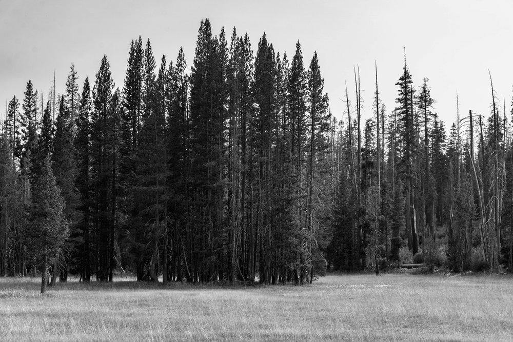 July 23-30 -- Backpacking Yosemite and Tyndall Peak (85 of 113).jpg