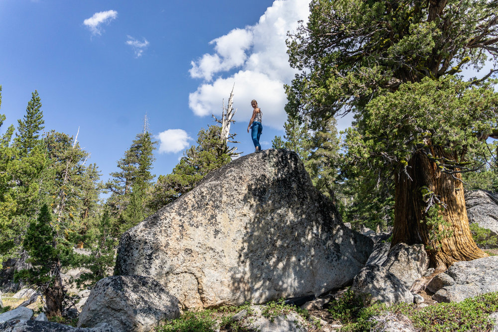 Aug 30-Sept 9-- Tahoe with Marie (216 of 265).jpg
