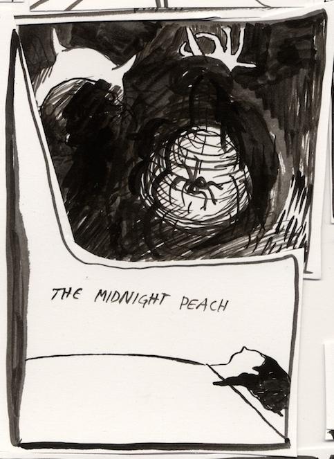 midnightpeach - Version 6.jpg