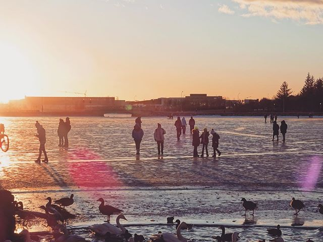 Frozen lake in Reykjavik... . . . . #reykjavik #reykjavikcity #Iceland #travel #travelholic #tripstagram #travelingram #backpacking #lake #frozen #freezing #cold #winter