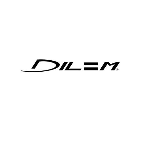 Dilem Logo.jpg