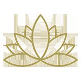 noun_yoga_1289752_b2a15b.png