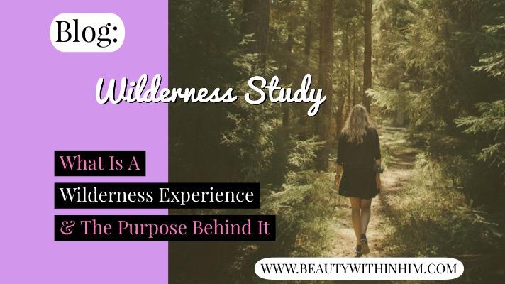 Wilderness Experience Blog.JPG