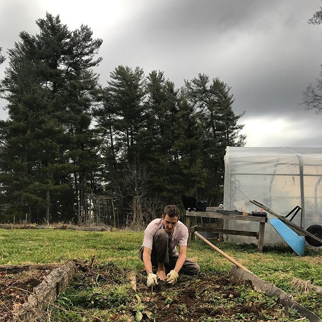 First day really getting back into the garden 🌱 Big feels. And a lot of excitement and overwhelm that comes with a big bag of seeds and learninglearninglearning. If you want to hang out with me this Spring/Summer, offer to come over and help weed and plant and drink water and beer and get your nails filled with dirt. It's fun, I promise!