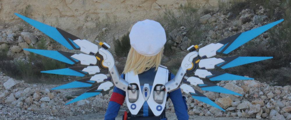 wings 2.jpg