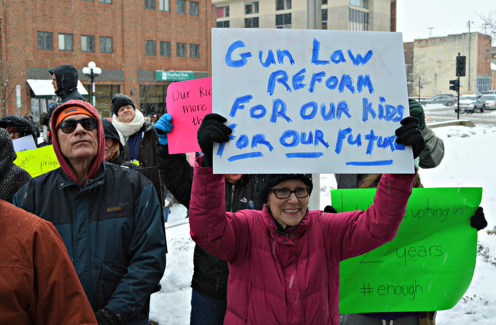 Supporters of gun reform braved the cold Saturday to advocate for stricter gun laws. (Image credit: Breanna Grow)