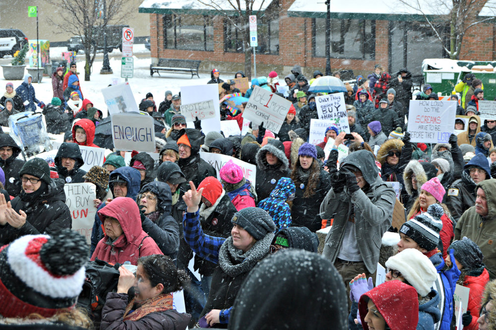 Hundreds of Bloomington-Normal students and residents gathered in Downtown Bloomington Saturday for one of many March for Our Lives rallies across the U.S. (Image credit: Breanna Grow)