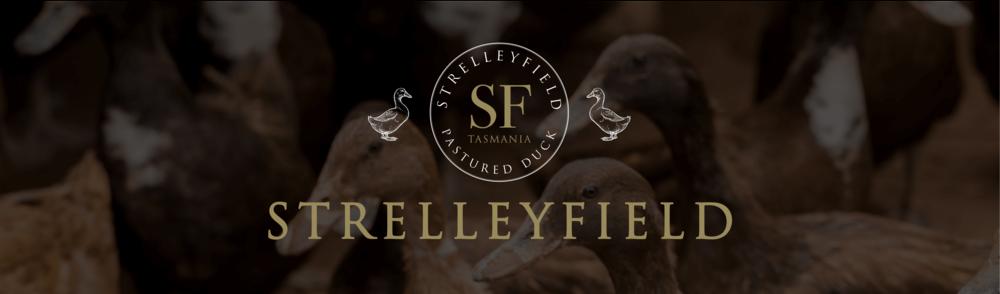 strelleyfield-banner.png