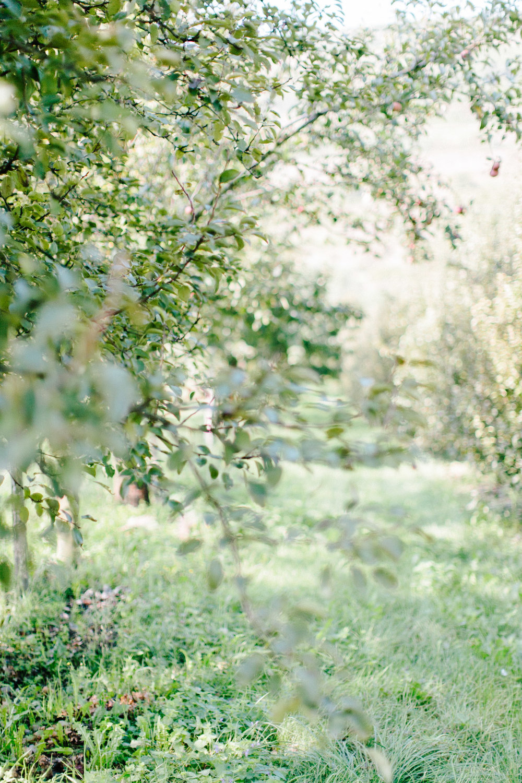 Lilienhof-Freiburg-Hochzeit-Pia-Anna-Christian-Wedding-Photography-FS-39.jpg