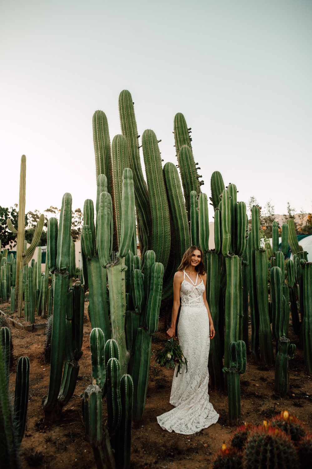 Cape-Town-Pia-Anna-Christian-Wedding-Photography-South-Africa-Bride-Cactus-14.jpg