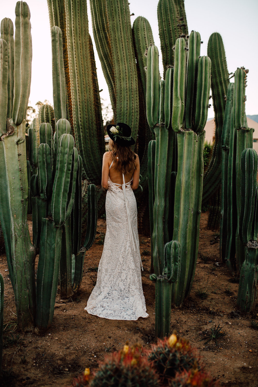 Cape-Town-Pia-Anna-Christian-Wedding-Photography-South-Africa-Bride-Cactus-31.jpg