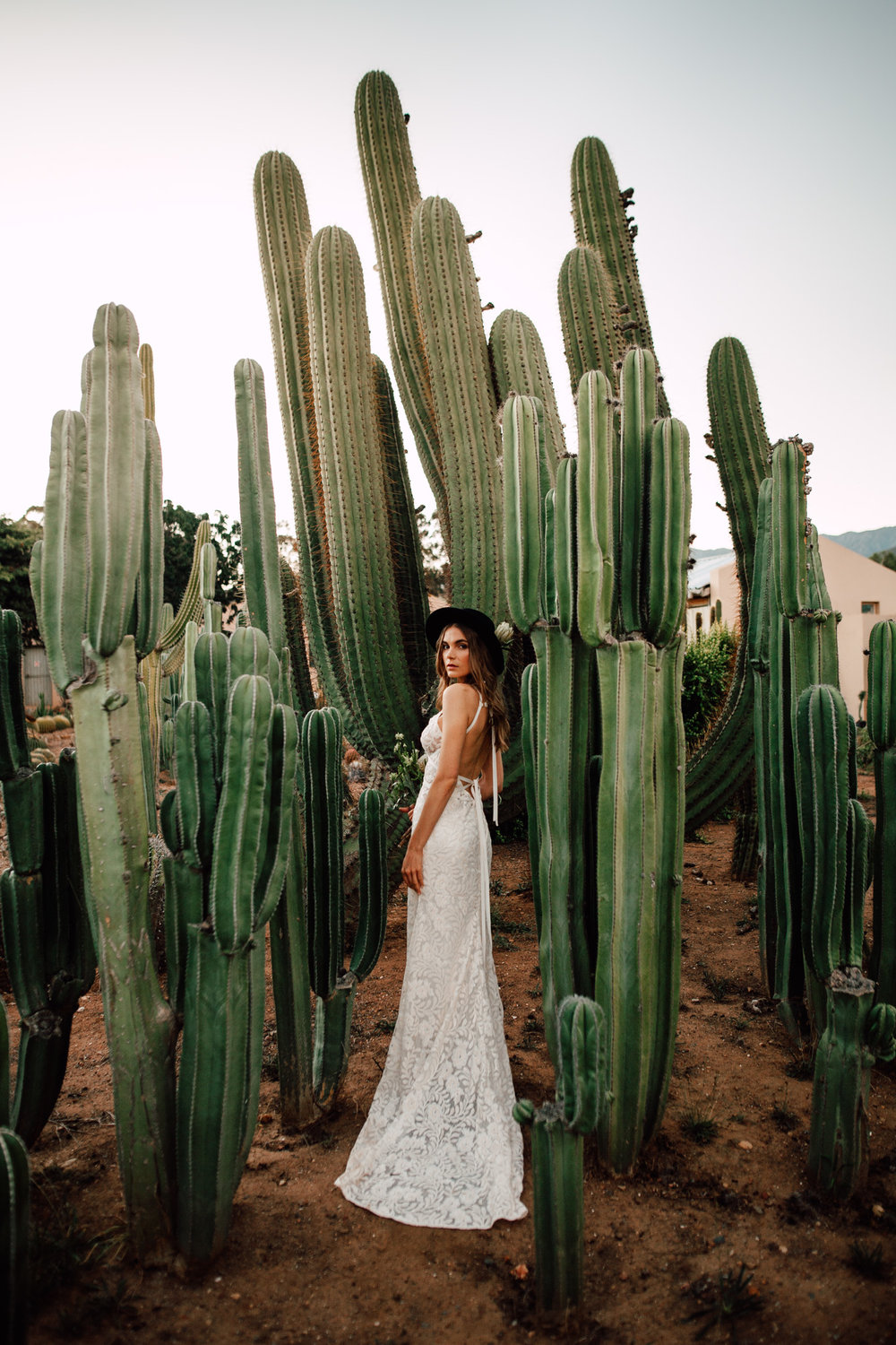 Cape-Town-Pia-Anna-Christian-Wedding-Photography-South-Africa-Bride-Cactus-32.jpg