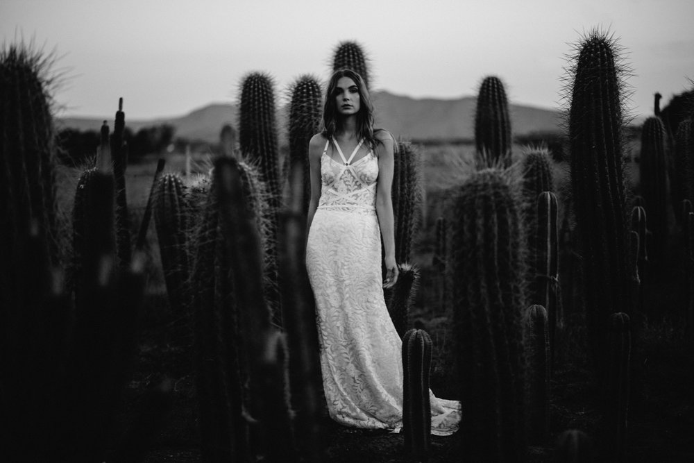 Cape-Town-Pia-Anna-Christian-Wedding-Photography-South-Africa-Bride-Cactus-34.jpg