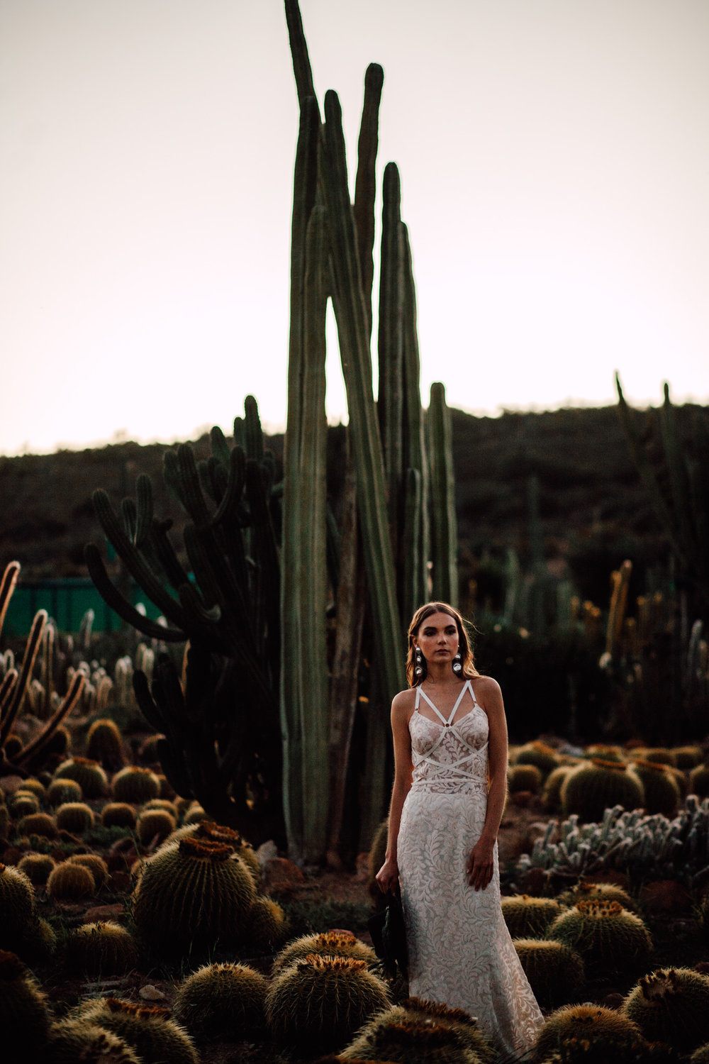 Cape-Town-Pia-Anna-Christian-Wedding-Photography-South-Africa-Bride-Cactus-41.jpg