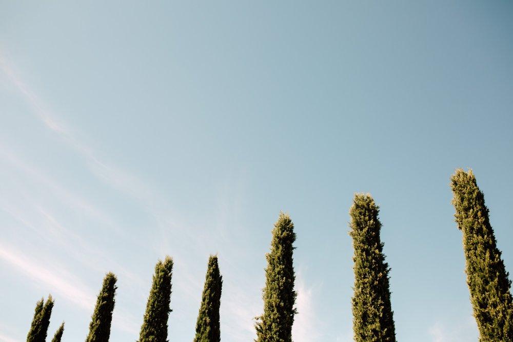Italy-Gardasee-Tenuta-La-Presa-Pia-Anna-Christian-Photography-BP-B-7.jpg