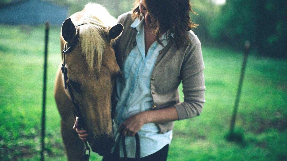 2298-Horse_Treatment_Help_MS-1296x728-header.jpg