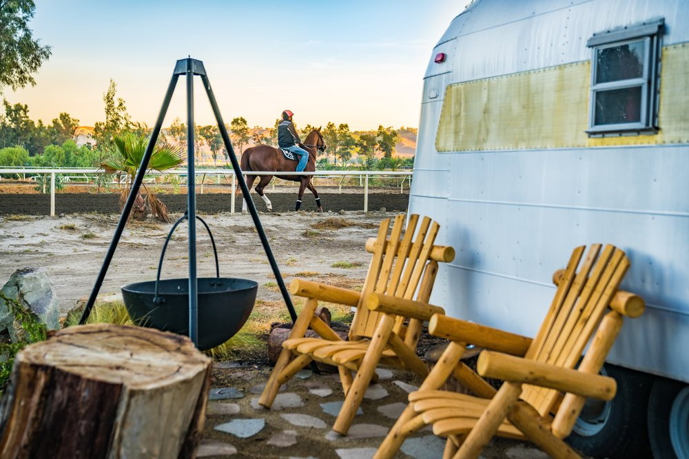 Trackside camping with World Class Thoroughbreds