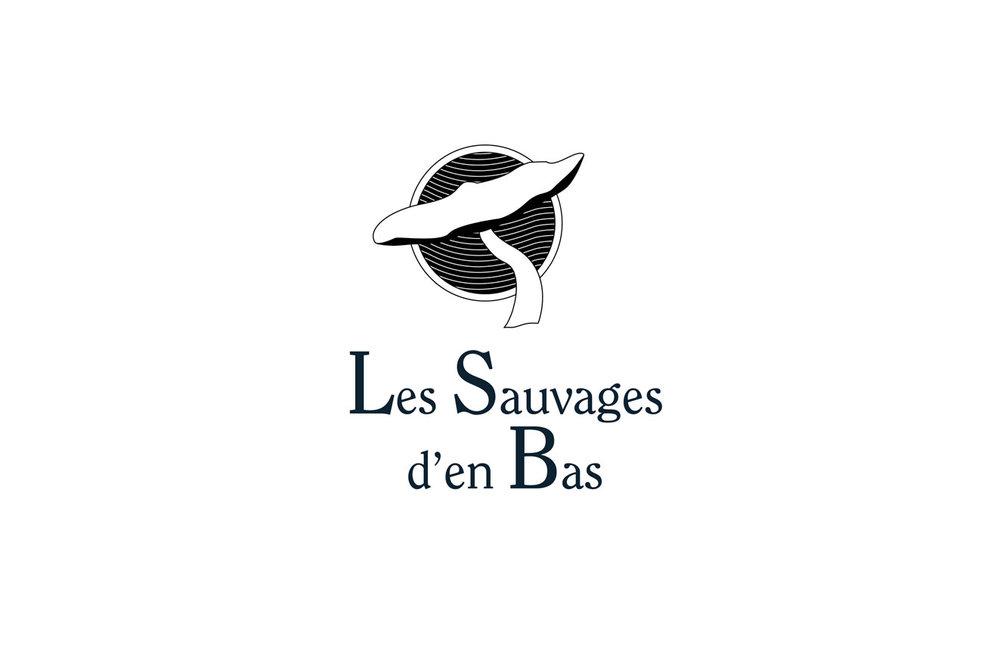 sauvages-d-en-bas-42.jpg